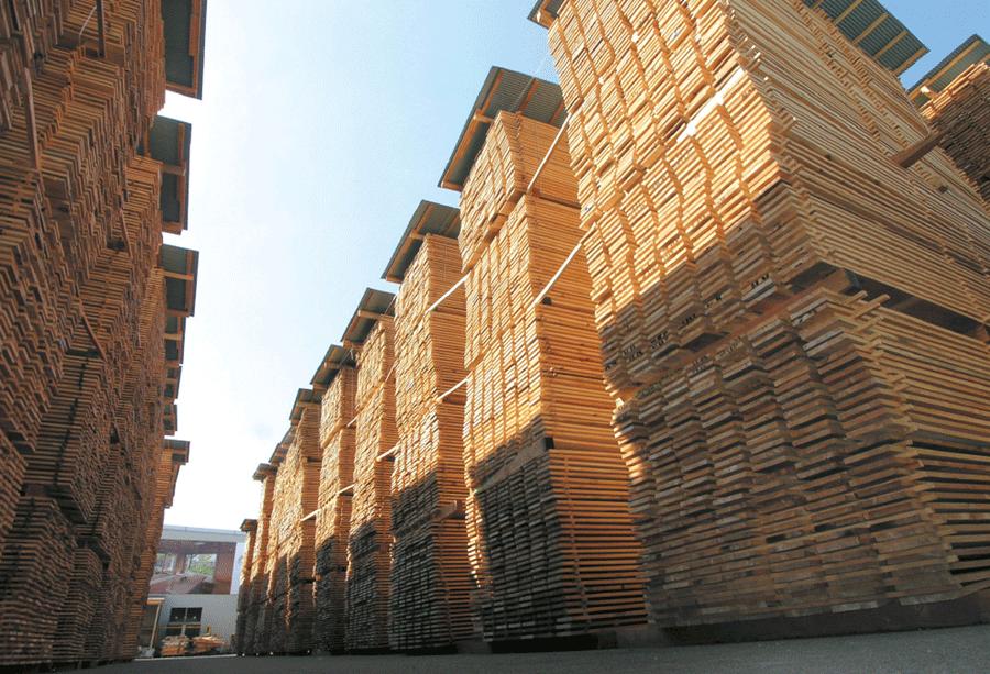 夢ハウスの木材一貫生産システムにより、高品質・低コストを実現しました。